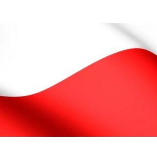 Podsumowanie Dzielnicowych Obchodów 100 - lecia Odzyskania przez Polskę Niepodległości